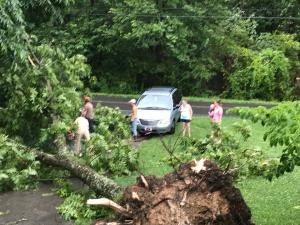 34 year old pecan tree falls blocks driveway on Orchard Hill Road and neighbors come to remove it for couple