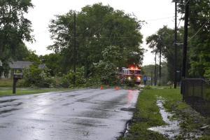 Rossville BLVD tree falls in road