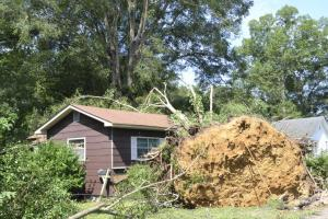 Half the house is smashed into the ground